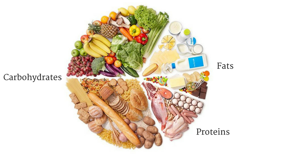 High Protein Foods Low Carbohydrates